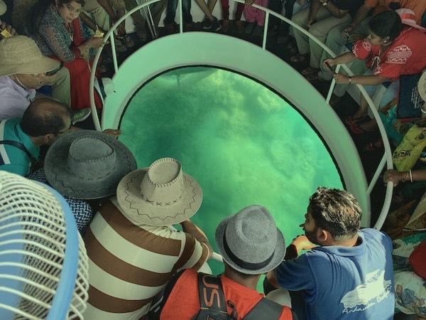 Andaman Dolphin Glass Bottom Boat Ride