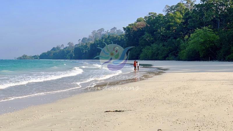 merk-bay-beach-andaman-islands.jpg