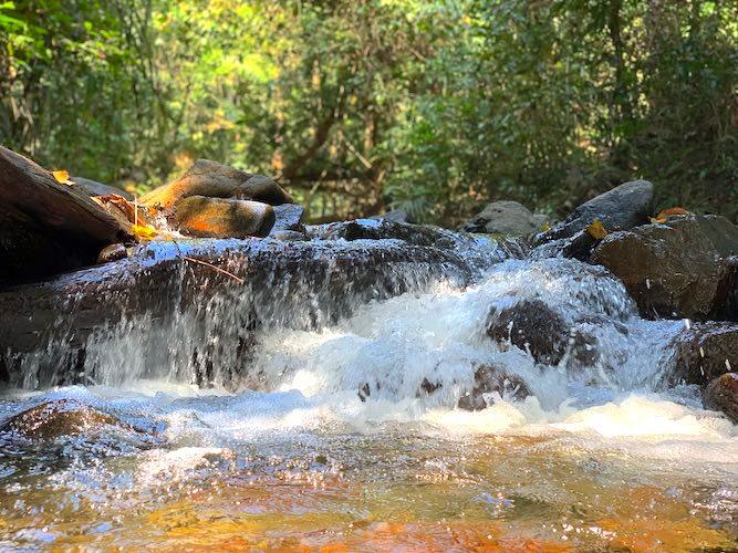 panchavati-waterfalls-rangat.jpg
