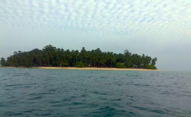Avis Island